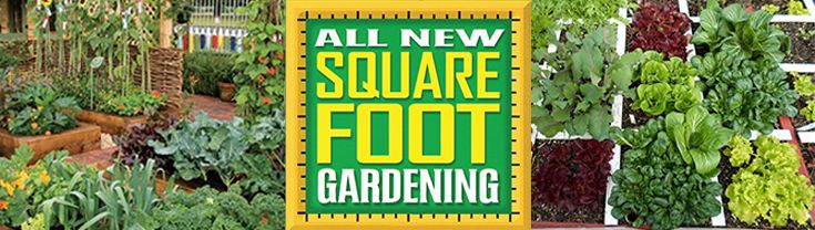 The Revolutionary Way To Start Growing Your Own Food Today! Square Foot  Gardening ...